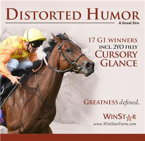 151470-DistortedHumor-CvrBanner-TDN-proof