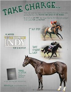 151581-TakeChargeIndy-TDN-proof2