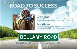 152426-BellamyRoad-half-TDN-proof