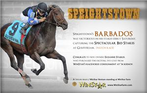152439-Speightstown-half-TDN-proof