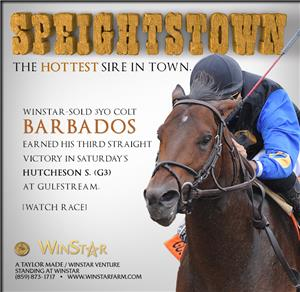 152651-Speightstown-cvrBanner-TDN-proof3