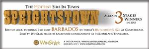153031-Speightstown-cvrStrip-DRF-proof