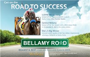 153069-BellamyRoad-half-TDN-proof