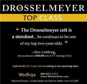 153133-Drosselmeyer-cvrBanner-TDN-proof2
