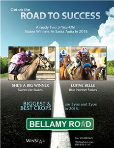 153148-BellamyRoad-TDN-proof3