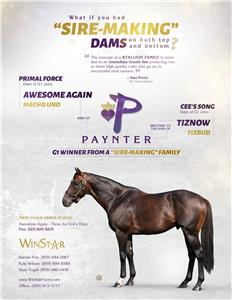 153628-Paynter-TDN-proof