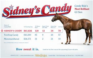 153811-SidneysCandy-half-TDN-proof
