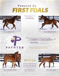 154344-Paynter-TDN-proof