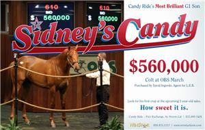 154614-SidneysCandy-half-TDN-proof