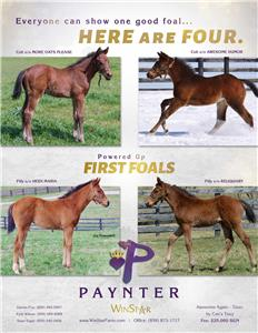 154741-Paynter-TDN-proof