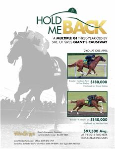 155736-HoldMeBack-TDN-Rev02-proof