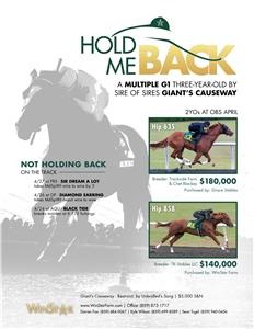 155782-HoldMeBack-TDN-proof2