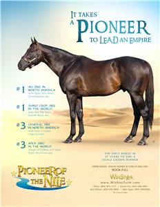 156724-PioneerofTheNile-TDN-FINAL