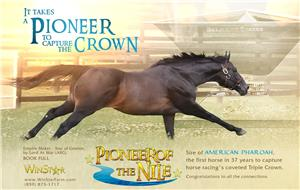 156754-PioneerofTheNile-half-TDN-proof