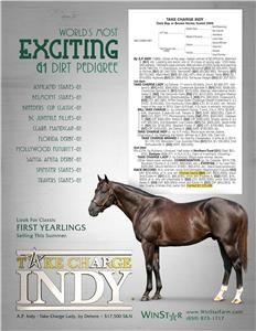 161950-TakeChargeIndy-TDN-Rev02
