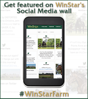Get featured on WinStar's Social Media wall
